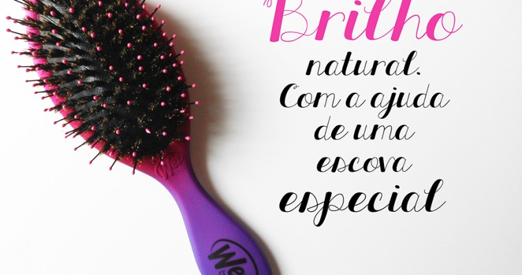 The Wet Brush #2 – The Shine Brush
