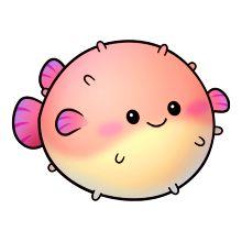 peixe balão edema inchaço gravidez