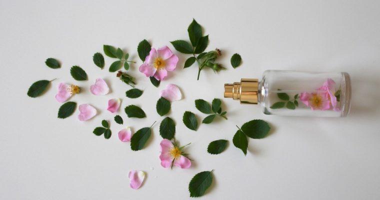 Perfumes para Seduzir