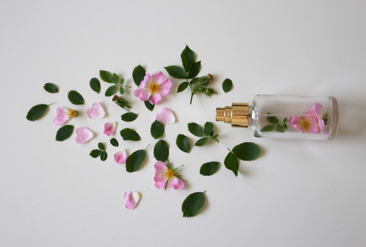 perfumes notino verdadeiros
